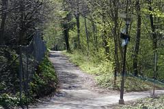 April's Green 2017 (Christian Natiez) Tags: april 2017 spring frühling green grün trees bäume road weg path pfad people leute menschen
