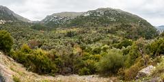 DSC_3578 (smülli) Tags: kreta crete hellas island mittelmeer mediterranian griechenland
