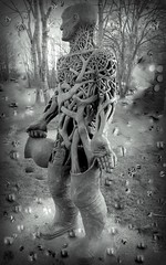 Whilst you are sleeping (gazkat41) Tags: trees tree woods sculpture sureal art artistic monochrome