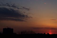 watching the sunset (theharv58) Tags: settingsun sunset sunsetintoronto canoneos60d canon60d toronto torontocanada sunsetintorontocanada sunsetovertoronto clouds cloudsandsunset canonef50mmf18ii