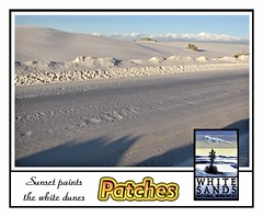 Patches 3 (Starkrusher) Tags: delicatearch livingdesertstatepark whitesandsnationalmonument hovenweepnationalmonument patches