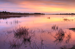 colors of Jackson Lake sunset (maryannenelson) Tags: colorado mancos jacksonlake sunset colors dusk landscape nonurban colorful