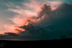 Behind the clouds (MooziX) Tags: sky clouds cloud cloudy light sun sunset silhouette dark tree black orange magenta grey scenics landscape blue dramatic horizon storm dartmoor devon uk tranquil travel explore wanderlust nature