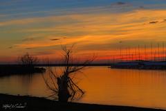 Grapevine Shore Twilight_MG_9739 (Alfred J. Lockwood Photography) Tags: alfredjlockwood nature landscape water grapevinelake morning dawn twilight sunrise clouds sky color harbor texas autumn
