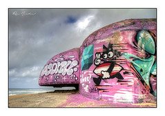 Le chat voit la vie en rose (Rémi Marchand) Tags: lègecapferret cap ferret nouvelle aquitaine gironde bunker casemate blockhaus tag graffiti plage océan atlantique vestiges rose mur de latlantique atlantic wall