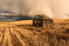 Daylight Rambler (garshna) Tags: wheat abandoned house homestead sky clouds storm stormclouds stormy easternwashington cloudsstormssunsetssunrises