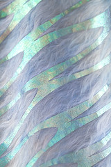 barbara medo insected textiles detail beetle 3 (barbaramedo) Tags: reflection texture colors fashion glitter insect print reflecting soft pattern shine cut foil metallic pastel femme beetle fluffy insects collection textures textile barbara fabric laser prints material shield iridescent concept textiles conceptual iridescence fatale materials styling shimmer fabrics holographic medo foils sinera insected wwwbarbaramedocom