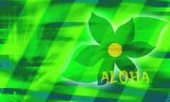 green_wallpapers_0076 (XandeCosta) Tags: wallpaper 1200x800