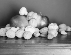 Fruit & Nuts (James Harr Photo) Tags: xray 4x5 speedgraphic