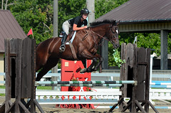 Big Jump (hpaich) Tags: park desktop new wallpaper horse fence newjersey jump ride background nj competition course jersey rider equestrian desktopwallpaper equine tack desktopbackground gait compete woodedge newjerseyhorsepark njhorsepark woodedgeatthepark