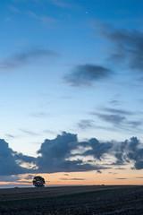 Perseiden Nacht auf der Insel Poel (JohannesK86) Tags: ocean night strand stars landscape deutschland lights star licht nikon meer nacht wolken shooting bluehour blau ostsee baum strandkorb sterne langzeitbelichtung sternschnuppe blaue blauestunde weitwinkel poel langzeit sternenhimmel uww perseiden lzb ultraweitwinkel