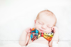 Newborn Boy 2013 (tarastarphotography) Tags: bowtie superman newborn newbornphotography nikond700