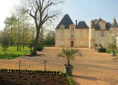 9671102140 a5271a526e m 2013 Bordeaux Images Photographs Chateau Owners Wine Food Life