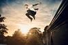 Celestial Leap (Rick Nunn) Tags: autumn trees roof sunset sky sun brick set tattoo fly high jump time rick lincoln launch leak nunn leap goldenhour equinox canonef28mmf18usm photospecs growlgrandeur celestialleap