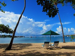 On Vacation (Heaven`s Gate (John)) Tags: blue trees sea vacation sun beach topf25 umbrella sand shadows view peaceful palm sunshade grenada caribbean idyll tranquil westindies loungers lanceauxepines 10faves 25faves johndalkin heavensgatejohn pricklybay thecalabash