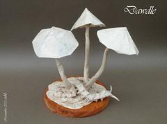 dawdle (-sebl-) Tags: mushroom origami shape centipede sebl dopaper