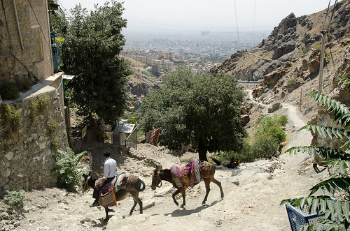 Tehran from Darband (1)