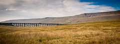 Ribblehead Viaduct (Fairy_Nuff (new website - piczology.com!)) Tags: road bridge train moss yorkshire north viaduct moor dales batty blea ribblehead ribblesdale