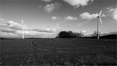 Windkraft (Sven-Salz) Tags: bw monochrome mono wind energie sw grne windkraft westerwald ko windkraftrder kostrom eppenrod