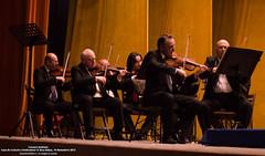 14 Noiembrie 2013 » Concert simfonic14 Noiembrie 2013 » Concert simfonic