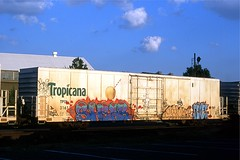 Shear - Beis - Lone - Sexes - on TPIX 3161 at Richmond VA Oct 5, 2013 (cogp39) Tags: graffiti trains lone tropicana sexes shear freightcars beis 2013 tpix
