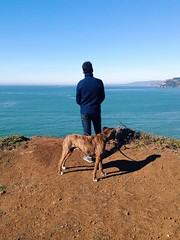 My loves. (jenschuetz) Tags: ocean california cliff nature water beauty outdoors waves marin hills trail bayarea headlands westcoast northbay tennesseepoint uploaded:by=flickrmobile flickriosapp:filter=nofilter