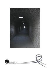 """45. Sergi <a style=""""margin-left:10px; font-size:0.8em;"""" href=""""http://www.flickr.com/photos/110347743@N05/11462652526/"""" target=""""_blank"""">@flickr</a>"""