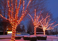 Christmas lights (Larry the Biker) Tags: christmas winter decorations snow december michigan decoration christmaslights christmasdecorations washingtontownship