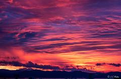 IMG_9551 (moutoons) Tags: morning cloud sun colors sunshine sunrise fire soleil town couleurs ciel nuage ville grue feu matin leverdesoleil levant aube laciotat chantiers navals