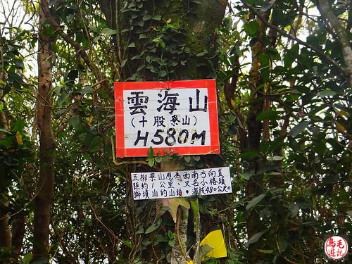 雲海山步道 (25).jpg