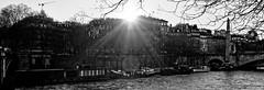 Paris-Bridges (Tueo) Tags: bw paris france seine nb