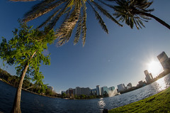 8mm Eola (rr1bry) Tags: sunset lake fountain skyline orlando florida palmtrees palmtree lakeeola downtownorlando