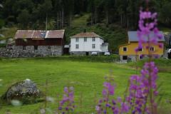 August 2016 (dese) Tags: luster jostedalen august sommar summer tal august07 2016 2016 sogn sognogfjordane vestlandet noreg norway dal