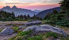 Alpine Meadow at Sunset (www.trinterphotos.com) Tags: uppergranitebasin rainier alpinemeadow sunset boulders trinterphotos richtrinter fineart eveninglight warmcolors