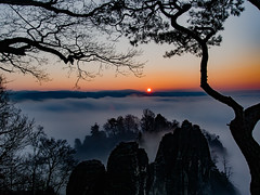 nebliger Sonnenaufgang an der Bastei (lens73germany) Tags: 365 365tage 365days project365 3652015 365daysproject fotodestages photooftheday 366 366tage 366days project366 3662015 366daysproject farbe bunt color colorkey olympus omd em5 mft landscape landschaft outdoor natur deutschland germany allemagne dresden sachsen saxony wolken clouds himmel sky heaven sächsische schweiz bastei felsen rocks mountain berge nebel fog mist sun sunrise sonnenaufgang baum tree