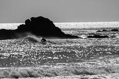 Surfer #2 (Robert Borden) Tags: bw blackandwhite surf surfer leocarillo statebeach socal malibu la losangeles southwest westcoast spray canon canonphoto canonphotographer