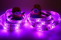 Minions 52 - Disco Divas (Topic 35) (cazphoto.co.uk) Tags: panasonic lumix dmcgx8 panasonic1235mmf28lumixgxvarioasphpowerois light topic35 minions minions52 phil stuart leds purple disco divas toybox2017 010317 toyboxmar2017 52weeks2017