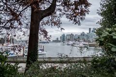 Walk in the park (vancouvertones) Tags: stanleypark vancouver wild boats tree rowing forest pacificnorthwest row canada park pwn skyline wilderness britishcolumbia