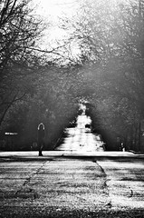 If I Stay Here, Trouble Will Find Me (AniccaPhotography) Tags: seaoflove blackanwhite sunflare perspective vanishingpoint solitary