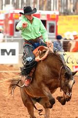 Bucking Good (RawTsnPhoto) Tags: tucsonrodeo rodeo tucson arizona action rodeoaction prorodeo prca bronc broncrider saddlebronc rawtsnphoto