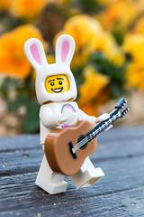 Easter bunny music (Ballou34) Tags: 2017 7dmark2 7dmarkii 7d2 7dii afol ballou34 canon canon7dmarkii canon7dii eos eos7dmarkii eos7d2 eos7dii flickr lego legographer legography minifigures photography stuckinplastic toy toyphotography toys kōbeshi hyōgoken japon jp stuck in plastic rabbit easter bunny guitar music flowers