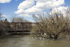 Eighth Street Bridge (Curtis Gregory Perry) Tags: boise idaho river bridge 8th eighth street flood water flooding deluge blue sky cloud nikon d810 50mm f12