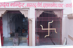_JMJ9280.jpg (jmj575m) Tags: book2 indiaqatartrip uttarpradesh swastika varanasi india in