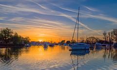 Sunrise Take Off (nicklucas2) Tags: quay christchurch river sunrise stour sun bird swan reflection water contrail yacht boat dorset