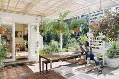 catching up with kristen (m2matiz_) Tags: peaceful haven outdoor plants garden sunshine self days autumn pergola inthegarden home