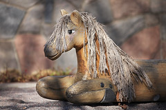 Bild 82/365 (PiaLiz) Tags: trä häst lek sten naturligt fs170326 balans fotosondag