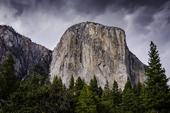 Yosemite-1721 (Ron Biedenbach) Tags: yosemitenationalpark sky trees forest woods clouds nationalpark