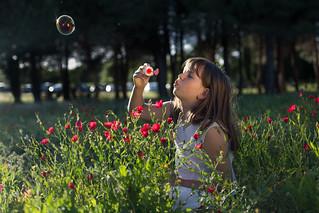 4/21 The soap bubble
