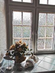 Fleurs et coquillages. (Gilles Daligand) Tags: naturemorte fleurs coquillages fenêtre salledebain filtre prisma iphone6s