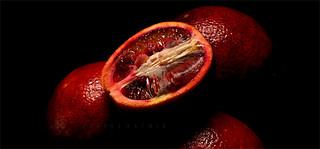 Red Oranges P3060339